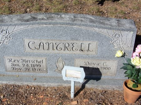 CARROLL CANTRELL, DOVIE ELIZABETH - Bartow County, Georgia | DOVIE ELIZABETH CARROLL CANTRELL - Georgia Gravestone Photos