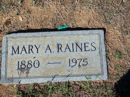 RAINES, MARY A. - Bartow County, Georgia   MARY A. RAINES - Georgia Gravestone Photos