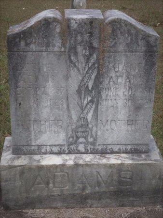 ADAMS, CYNTHIA JANE - Bartow County, Georgia | CYNTHIA JANE ADAMS - Georgia Gravestone Photos