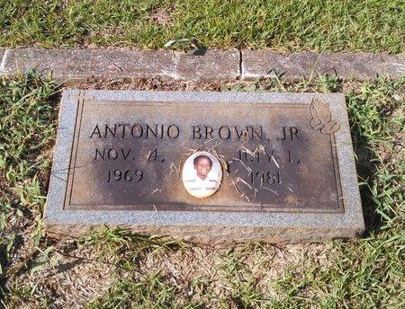 BROWN, ANTONIO - Carroll County, Georgia | ANTONIO BROWN - Georgia Gravestone Photos