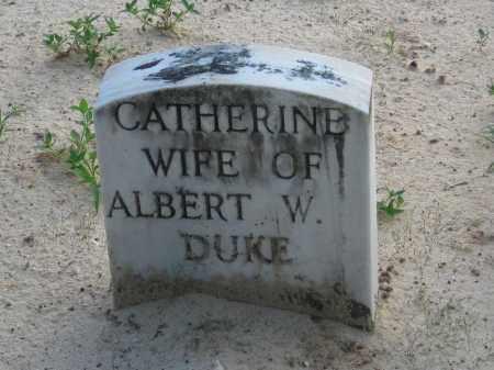 DUKE, CATHERINE - Carroll County, Georgia   CATHERINE DUKE - Georgia Gravestone Photos