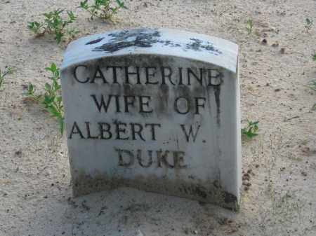 DUKE, CATHERINE - Carroll County, Georgia | CATHERINE DUKE - Georgia Gravestone Photos