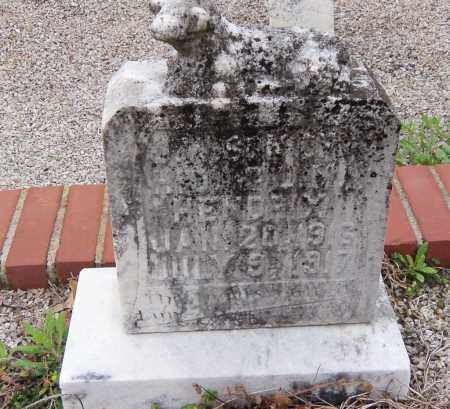 HENDRIX, JAMES WILLIAM - Carroll County, Georgia | JAMES WILLIAM HENDRIX - Georgia Gravestone Photos