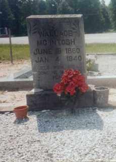 MCINTOSH, WILLIAM WALLACE - Carroll County, Georgia | WILLIAM WALLACE MCINTOSH - Georgia Gravestone Photos