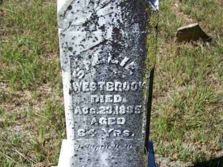 WESTBROOK, SALLIE - Cherokee County, Georgia | SALLIE WESTBROOK - Georgia Gravestone Photos