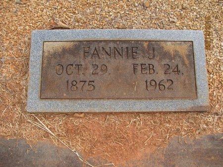 TEAT, FANNIE - Franklin County, Georgia | FANNIE TEAT - Georgia Gravestone Photos