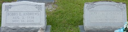 ANDREWS, MARY A - Grady County, Georgia | MARY A ANDREWS - Georgia Gravestone Photos