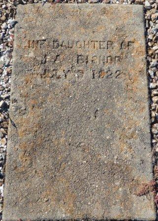 BISHOP, INFANT DAUGHTER - Grady County, Georgia | INFANT DAUGHTER BISHOP - Georgia Gravestone Photos