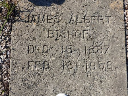BISHOP, JAMES ALBERT - Grady County, Georgia | JAMES ALBERT BISHOP - Georgia Gravestone Photos
