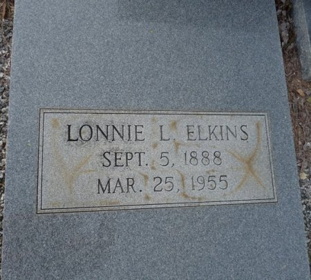 ELKINS, LONNIE L - Grady County, Georgia | LONNIE L ELKINS - Georgia Gravestone Photos