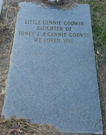 GODWIN, GENNIE - Grady County, Georgia | GENNIE GODWIN - Georgia Gravestone Photos