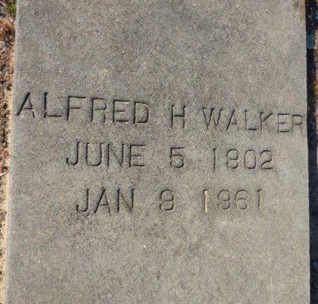 WALKER, AFRED H - Grady County, Georgia | AFRED H WALKER - Georgia Gravestone Photos