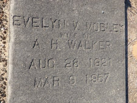 WALKER, EVELYN V - Grady County, Georgia | EVELYN V WALKER - Georgia Gravestone Photos