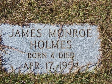 HOLMES, JAMES MONROE - Pickens County, Georgia | JAMES MONROE HOLMES - Georgia Gravestone Photos