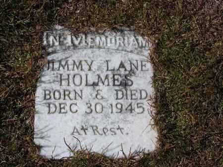 HOLMES, JIMMY LANE - Pickens County, Georgia | JIMMY LANE HOLMES - Georgia Gravestone Photos