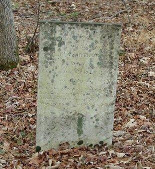 MCARTHUR, LEROY W. - Pickens County, Georgia | LEROY W. MCARTHUR - Georgia Gravestone Photos