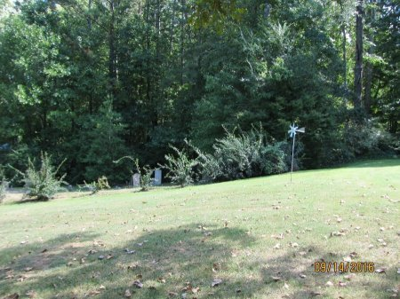 *JAMES, OVERVIEW - Pickens County, Georgia | OVERVIEW *JAMES - Georgia Gravestone Photos