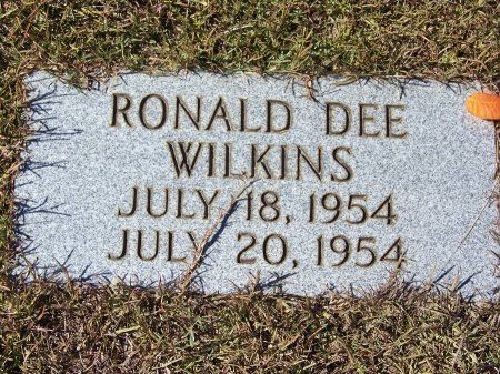 WILKINS, RONALD DEE - Pickens County, Georgia | RONALD DEE WILKINS - Georgia Gravestone Photos