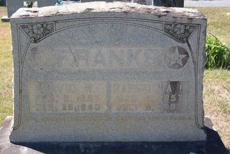 KINSLAND FRANKS, SAPHRONIA ISLAND - Towns County, Georgia | SAPHRONIA ISLAND KINSLAND FRANKS - Georgia Gravestone Photos