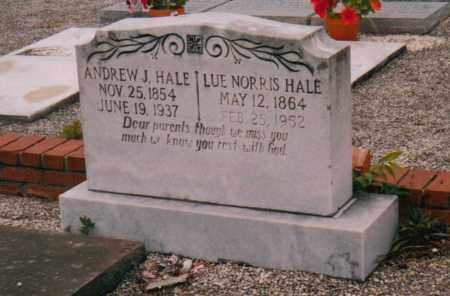 HALE, ANDREW JACKSON - Troup County, Georgia | ANDREW JACKSON HALE - Georgia Gravestone Photos
