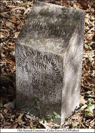 RAWLINGS, WILLIAM P. - Walker County, Georgia | WILLIAM P. RAWLINGS - Georgia Gravestone Photos