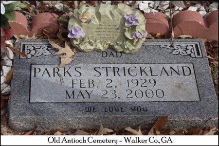 STRICKLAND, PARKS - Walker County, Georgia | PARKS STRICKLAND - Georgia Gravestone Photos