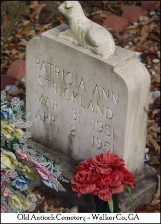 STRICKLAND, PATRICIA ANN - Walker County, Georgia | PATRICIA ANN STRICKLAND - Georgia Gravestone Photos